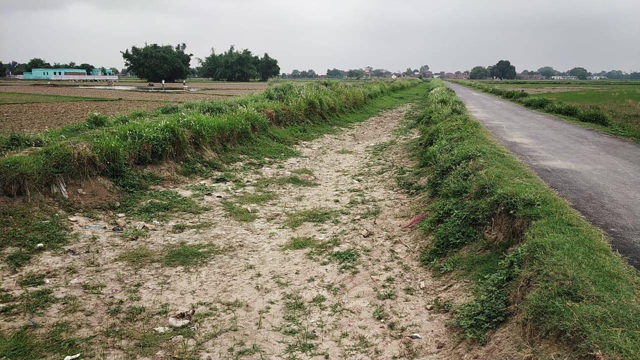 पंप कैनाल के नहीं चलने के कारण सूखने लगीं नहरें, किसानों में बढ़ रहा है आक्रोश