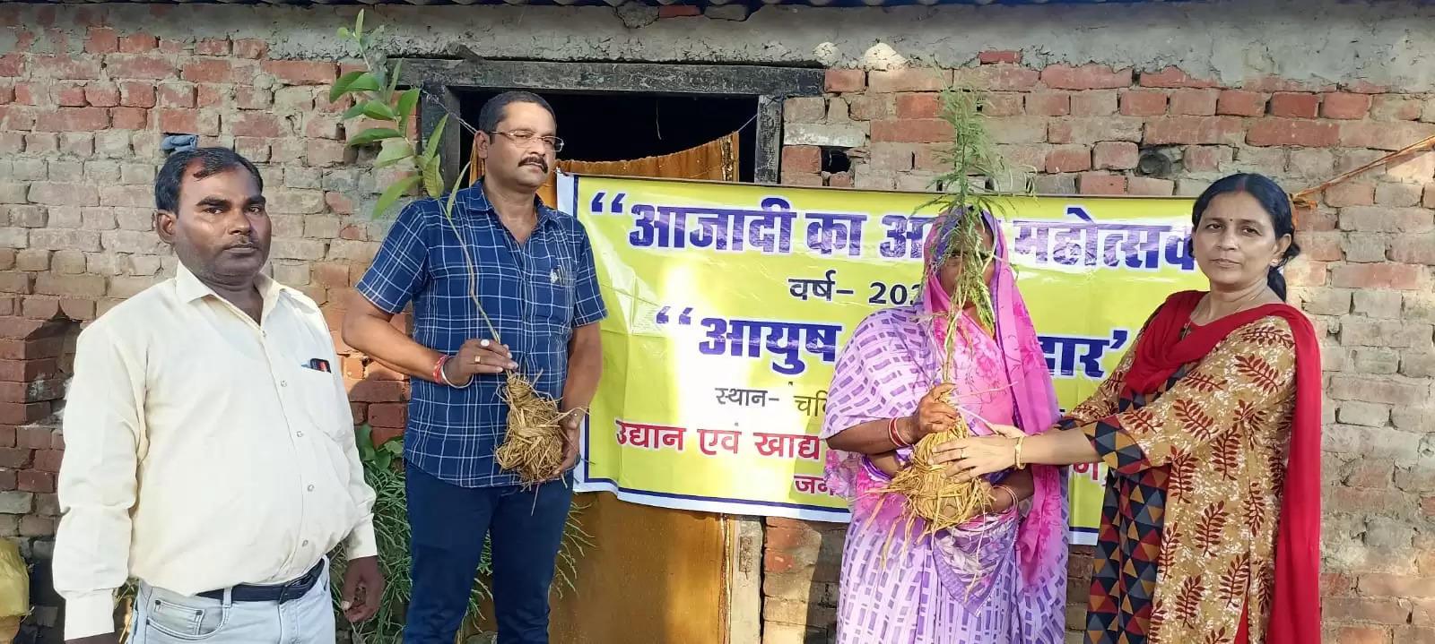 Udyan Vibhag Given Fruit Plants