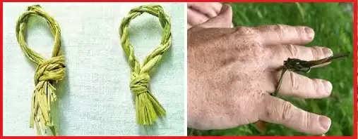 amavasya puja tips