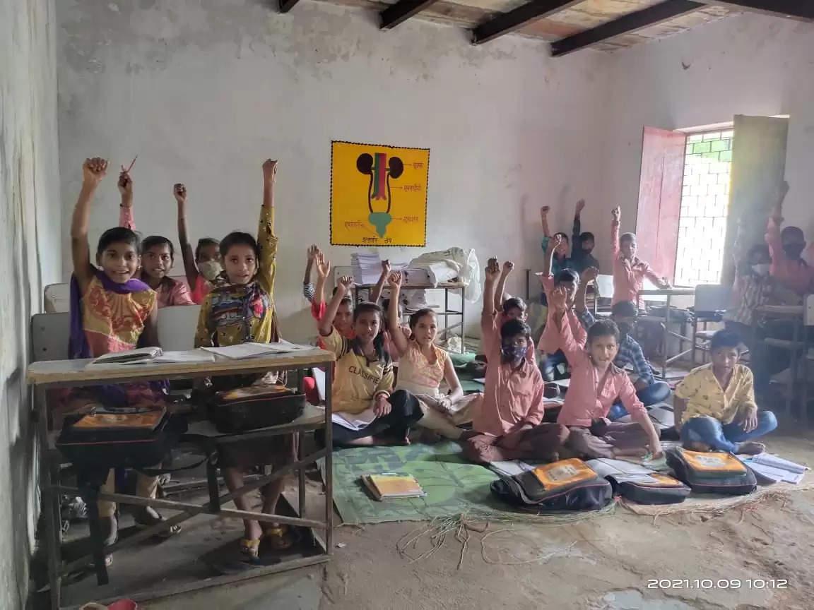 School reality